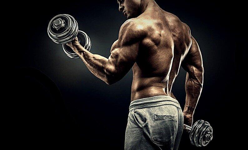 3 главные причины почему не растут мышцы рук