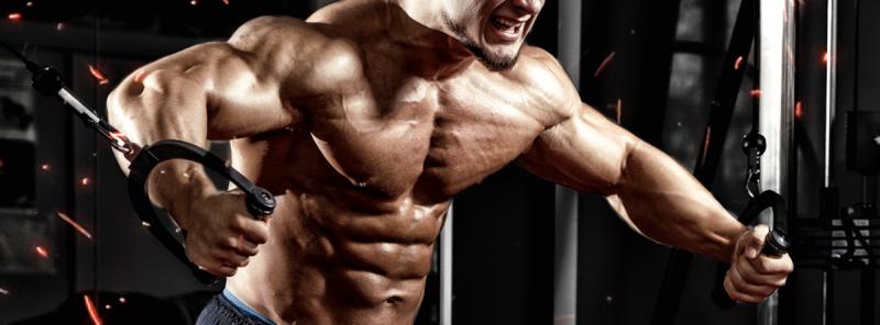 5 упражнений в кроссовере для грудных мышц
