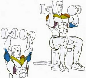 5 жимовых упражнений для роста плеч