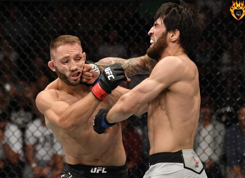 И снова судьи UFC удивляют своим решением