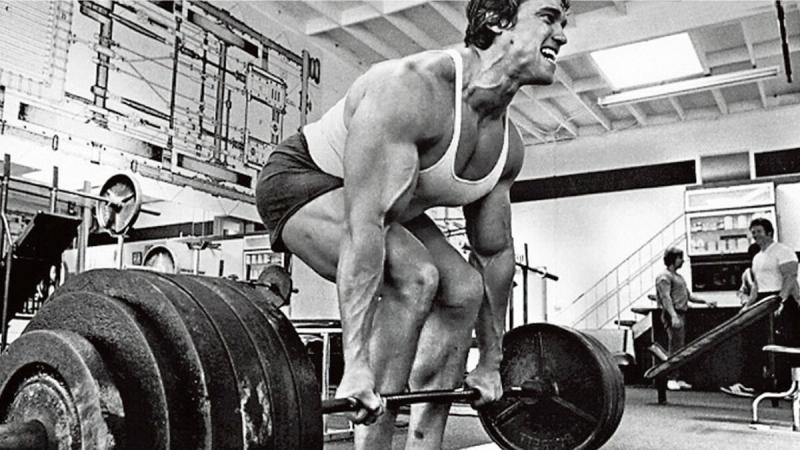 Насколько сильны бодибилдеры?