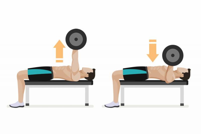Программа тренировок в зале на массу — 3 раза в неделю