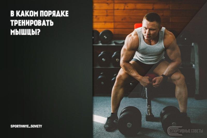 В каком порядке тренировать мышцы?