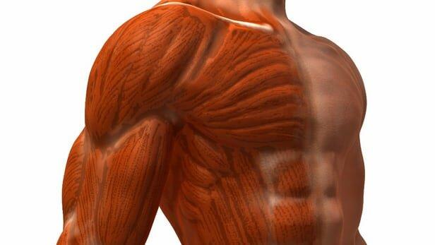 Вес тела как снаряд для тренировок дома. Домашняя воркаут тренировка на рельеф.