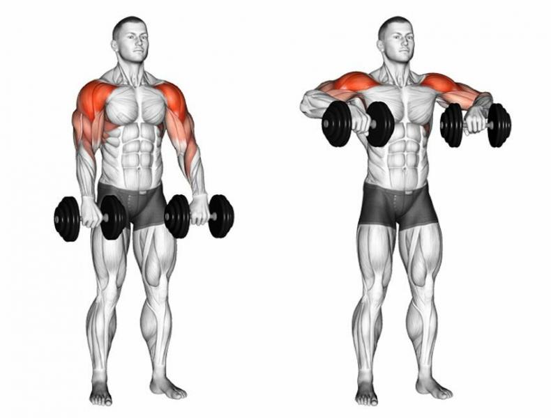3 упражнения с гантелями, которые помогут накачать вам плечи настоящего мужика.