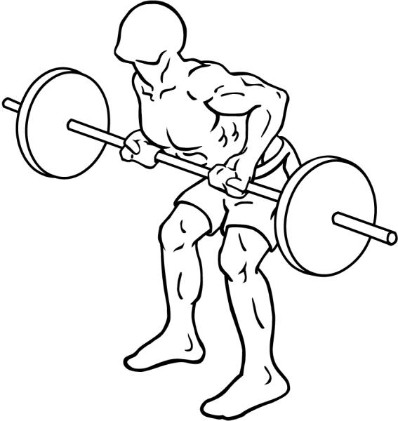 Два лучших упражнения для развития мощной спины