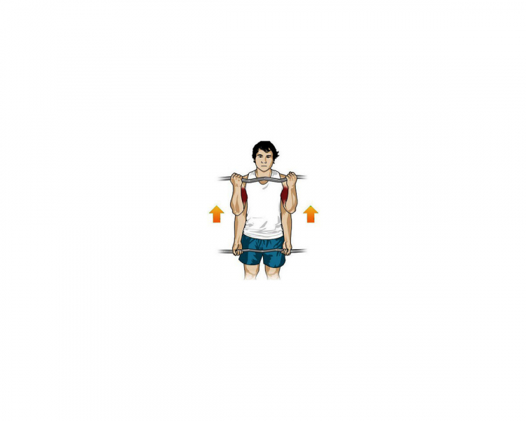Как накачать бицепс? Упражнения на рост и силу.