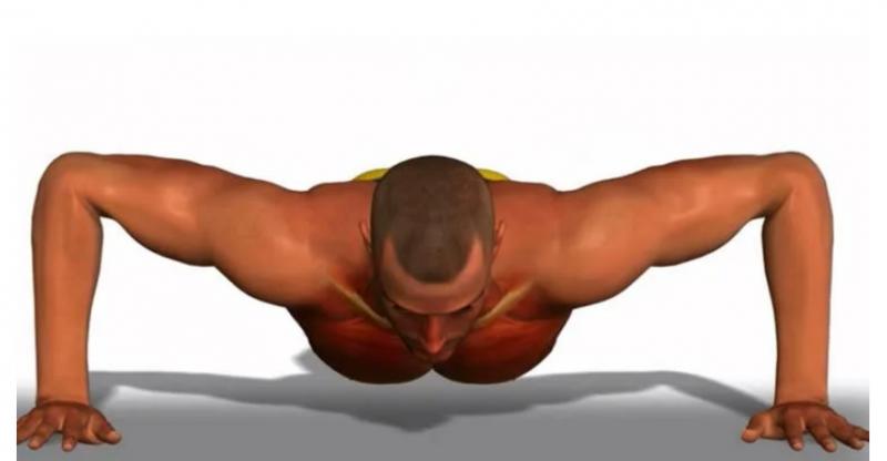 Как за 5 подходов отжиманий от пола мощно прокачать грудные мышцы и трицепс? Если тренируетесь дома