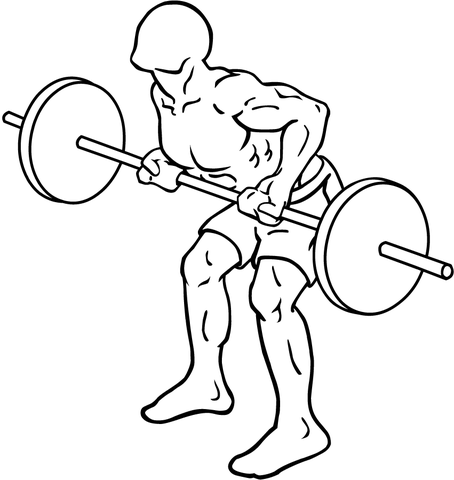 Лучшее упражнение для массы задней дельты