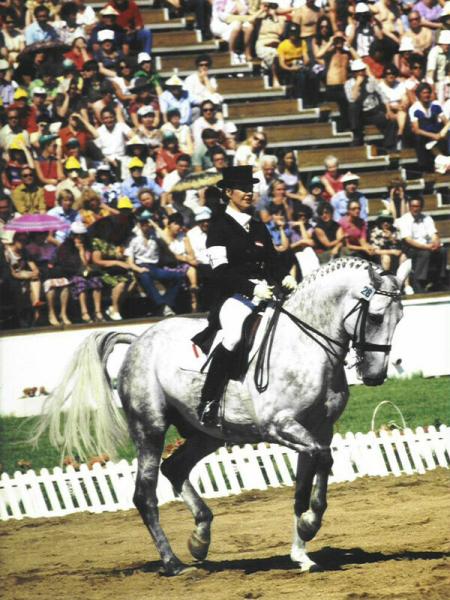 Олимпиада-80. Лошадки!