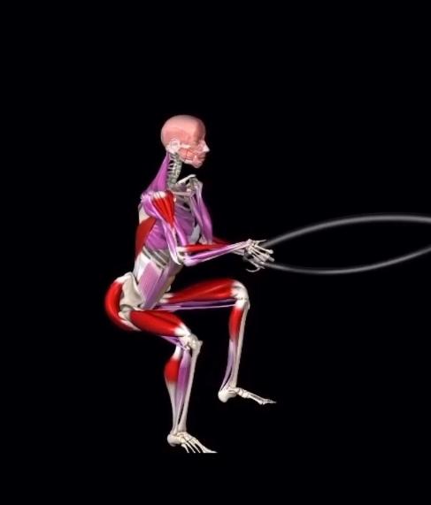 ТРЕНИРОВКА С КАНАТОМ видео о работающих мышцах и технике выполнения.