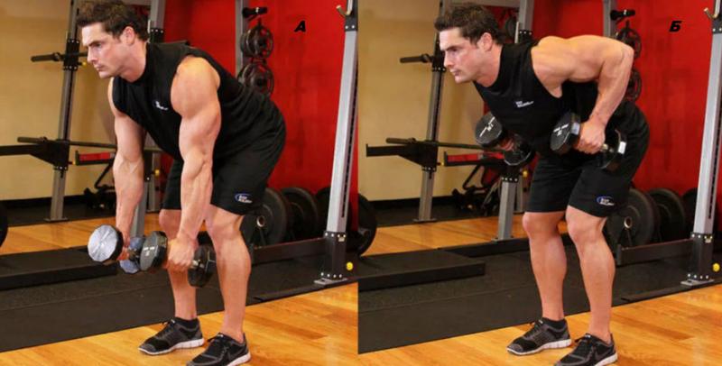5 лучших упражнений с гантелями для тех кому за 40. Чтобы мощно прокачать все мышцы