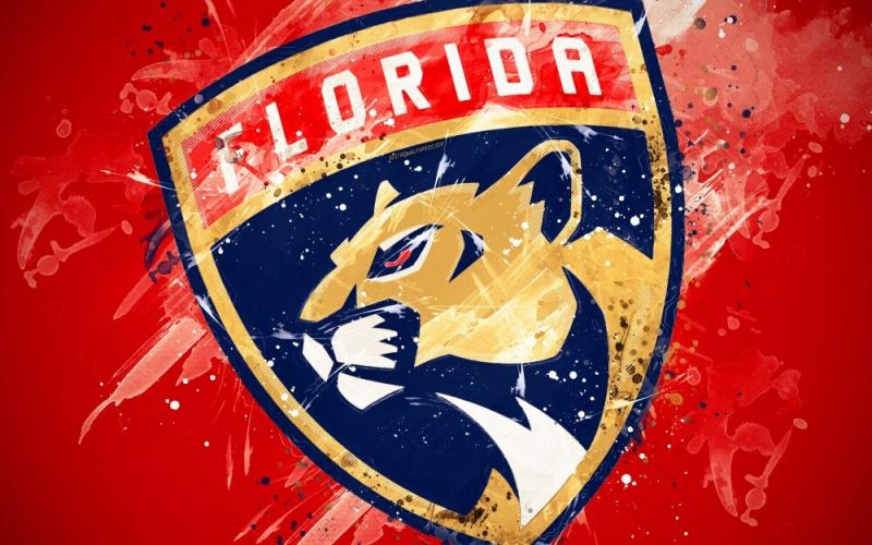 Лучшие снайперы «Флорида Пантерз» за всю историю франшизы