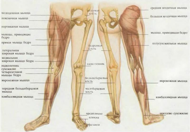 Пара простых упражнений для улучшения подвижности тазобедренного и коленного сустава.