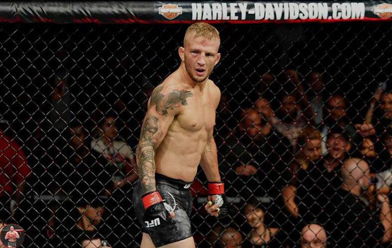 У кого из бойцов больше всего побед в легчайшем весе UFC за всю историю.