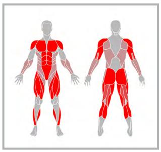 Начинай работать над своим телом. Моя общая тренировка.