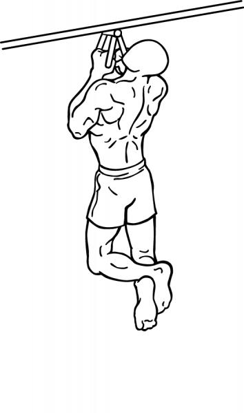 Подтягивания параллельным хватом для рук и спины
