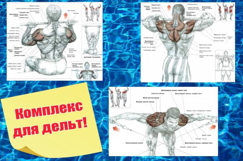 Как тренировать ноги и плечи в один день!?Особенности эффективной тренировки.