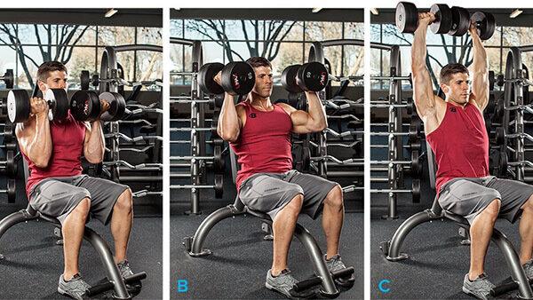 Можно ли сделать плечи шире с помощью упражнений?