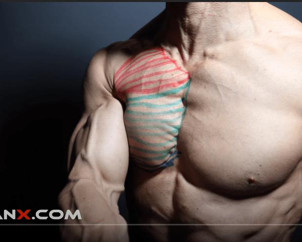Как построить идеальную грудь? Показываю лучшие упражнения