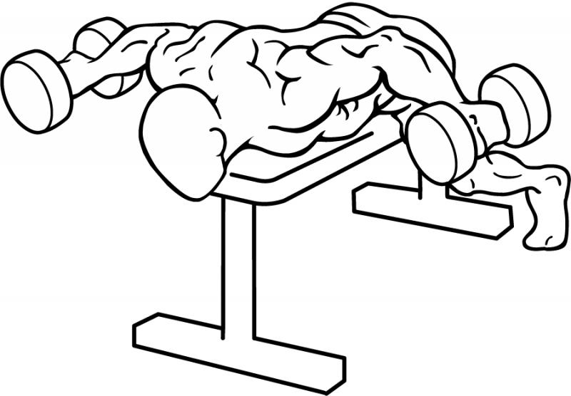 Комплекс упражнений, который заставит заднюю дельту расти