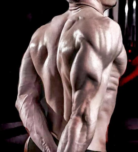 Ширина хвата в упражнениях на трицепс.