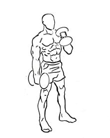 Тренируем брахиалис для массы руки