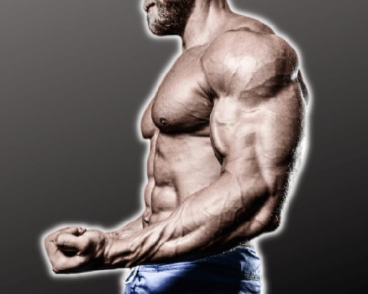 Тренировочные принципы для набора мышечной массы после 30 лет. Пошаговое руководство.