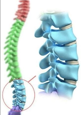 Простые упражнения для укрепления мышц поясницы и сохранения здоровья позвоночника.