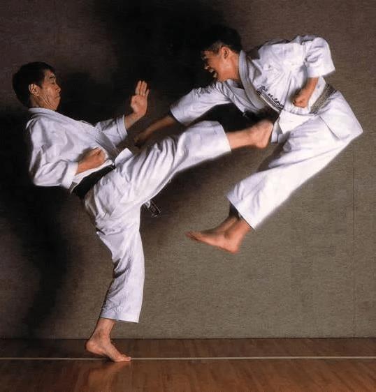 Проблемы судейства - 2 (взаимное уничтожение - Ai-uchi - 合打)